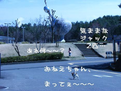 IMG_3351.jpg
