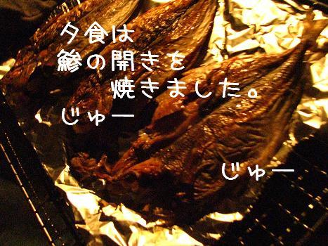 IMG_3440.jpg
