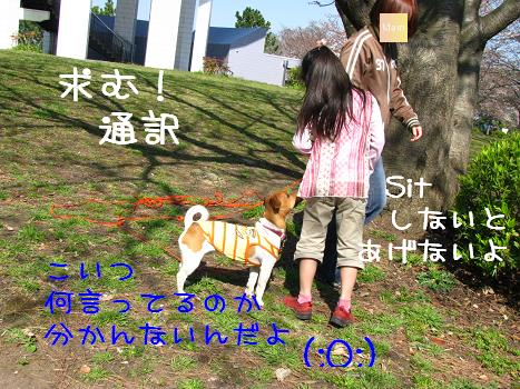 IMG_3527.jpg