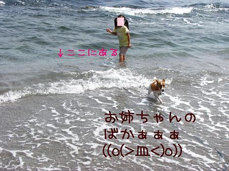 IMG_3869a.jpg