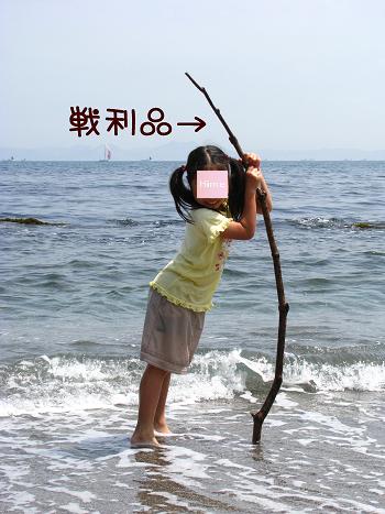 IMG_3871.jpg