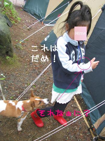 IMG_5106.jpg