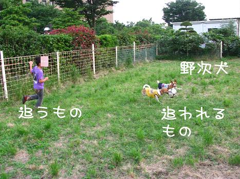 IMG_5508.jpg