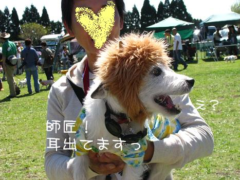 IMG_7005.jpg