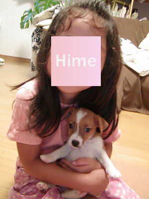 P9010001.png