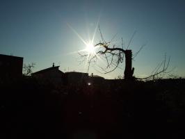 2009_04280002.jpg