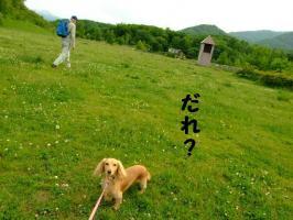 2009_06090108.jpg