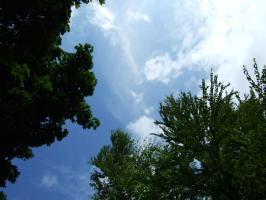 2009_06180065.jpg