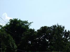 2009_08110019.jpg
