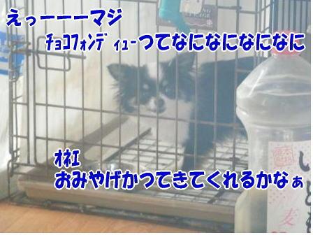 DSCF1091.jpg