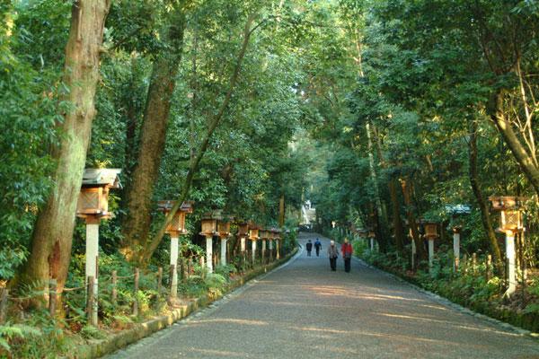 大神神社DSCF0759