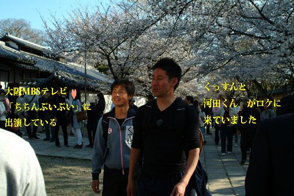2011-04-06_0994.jpg