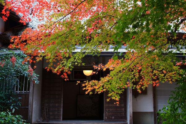 2011-11-27_2403.jpg