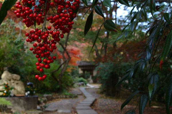 2011-11-27_2422.jpg