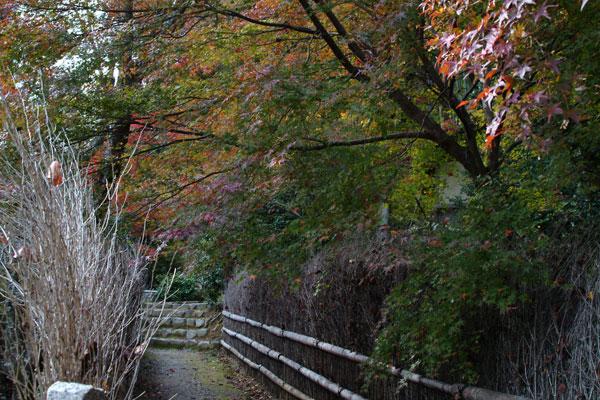 2011-11-27_2494.jpg