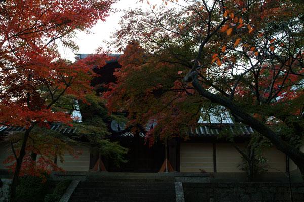 2011-11-27_2565.jpg