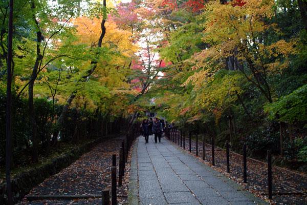 2011-11-27_2603.jpg