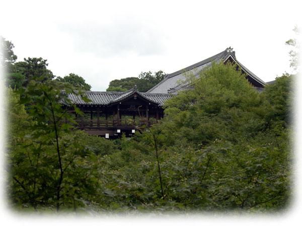 DSCN5089通天橋