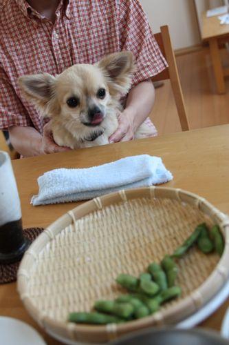 etsuko_san_090703_2.jpg