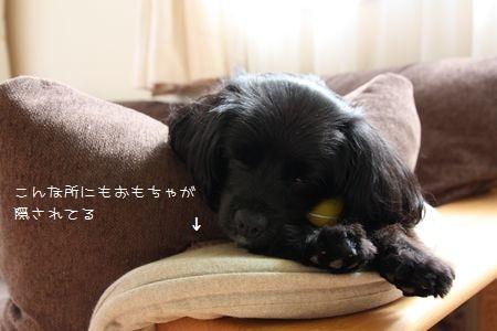 hana_091004.jpg