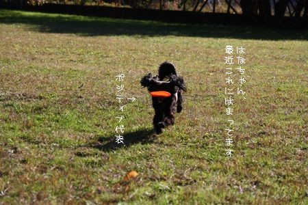 hana_fb_091218.jpg