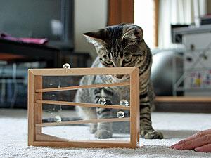 http://blog-imgs-24.fc2.com/m/o/n/mononeko/081206-5.jpg