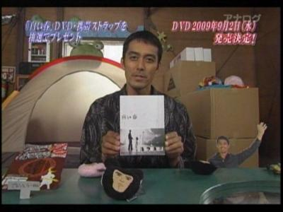 shiroiharu2.jpg