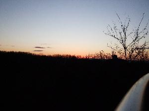 東の空、日の出前