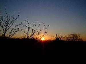 夕日みたいね