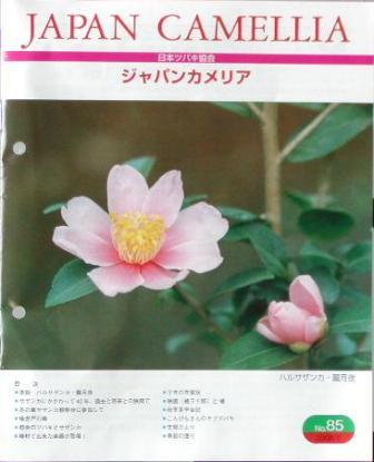 tsubaki1_20080216073802.jpg