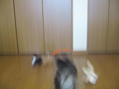 0701_04.jpg