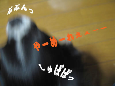 IMG_0132___.jpg