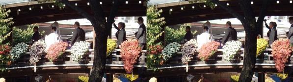 湯島天満宮結婚式?(平行法)