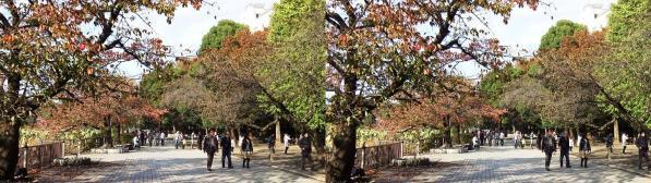 上野公園紅葉(平行法)