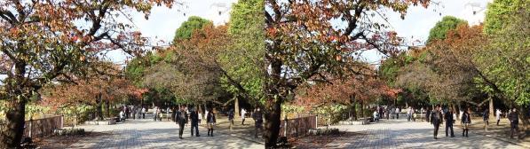 上野公園紅葉(交差法)