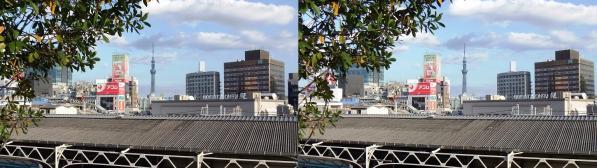 上野からのスカイツリー(平行法)