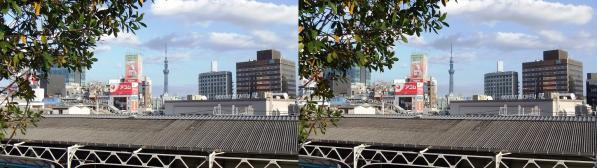 上野からのスカイツリー(交差法)
