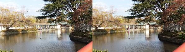 鶴岡八幡宮⑥(交差法)