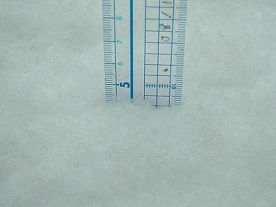 08/2/9 05 積雪5センチ