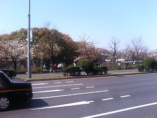 P1020042.jpg