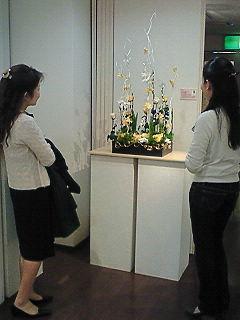 20080418234907