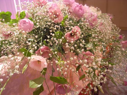 8.09.2009.名花 045
