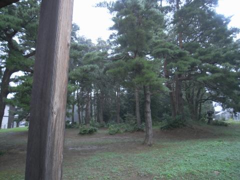 8.31.2009.名花 011