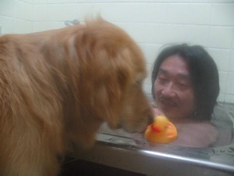 お風呂に浮かべたよ