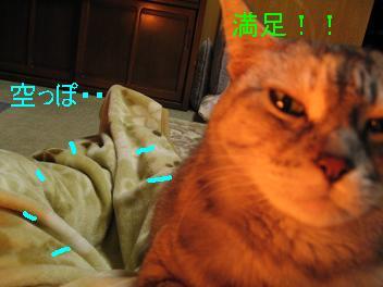 IMG_1446.jpg
