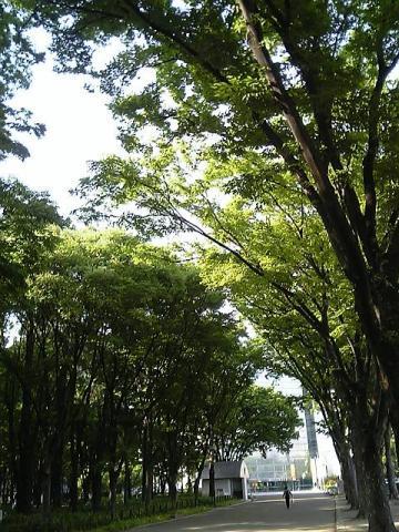 20070524-2.jpg