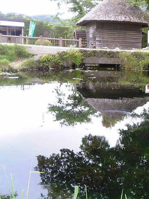 20080620-12.jpg