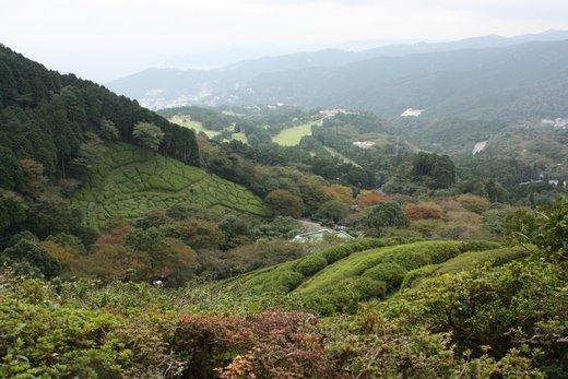 IMG_3906景色