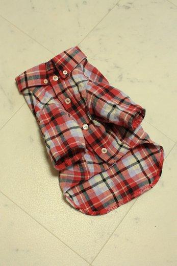 IMG_4398シャツ