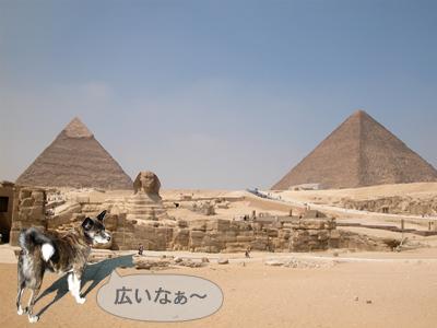 5463915yejipt.jpg